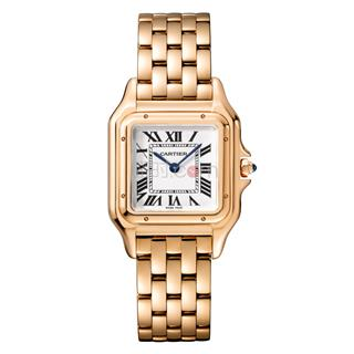 卡地亚 Cartier PANTHERE DE CARTIER腕表系列 WGPN0007 石英 女款