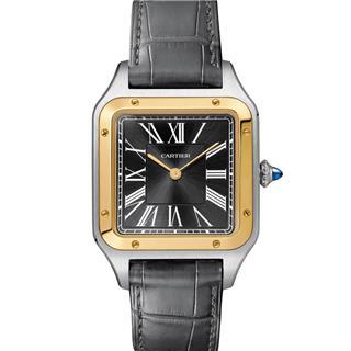 卡地亚 Cartier SANTOS DE CARTIER系列 W2SA0015 机械 男款